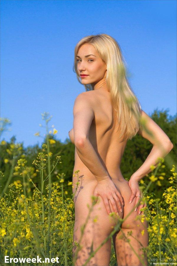НЮ фотографии Katka на цветочном поле (14 фото)
